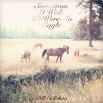 billcallahan_sometimesiwish_Toy_Fight_Subjective